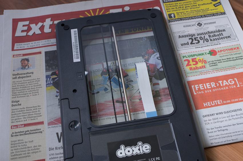 doxie-flip-6535